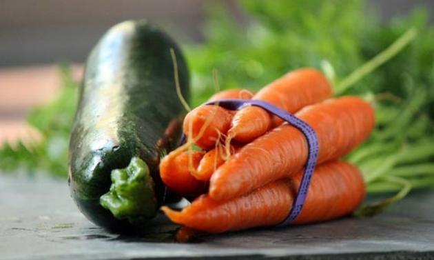 ΕΛΓΟ Δήμητρα: Δωρεάν εγχειρίδιο καλλιέργειας κηπευτικών ειδών