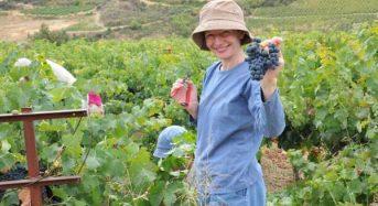 Απαραίτητο το Ειδικό Σήμα Αγροτουρισμού στις επιχειρήσεις του κλάδου, Όροι και προϋποθέσεις χορήγησης