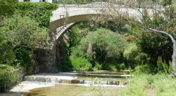 Ανάγκες για δημιουργία ΚοινΣΕπ στην Δήμο Ελασσόνας στις παρακάτω δραστηριότητες