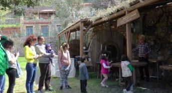 Mε άρωμα… Μαμάς γαστρονομικά τουρ στην Πελοπόννησο με επίκεντρο την Καλαμάτα
