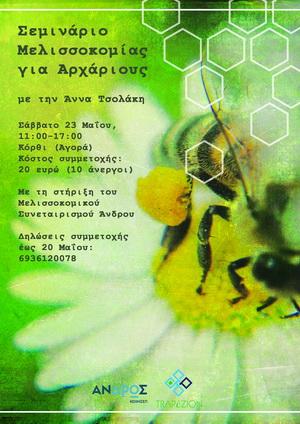 Σεμινάριο Μελισσοκομίας για αρχάριους από ΚοινΣΕπ στην Ανδρο