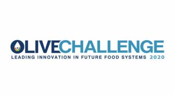 OLIVE CHALLENGE  ο μοναδικός διαγωνισμός επιχειρηματικότητας και καινοτομίας