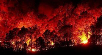 Μέτρα προστασίας από τις Περιαστικές Πυρκαγιές