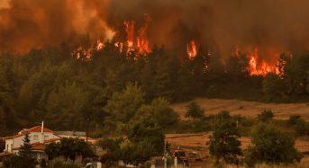 Φωτιές στην Εύβοια – Πώς θα υποβληθούν οι δηλώσεις αναστολών συμβάσεων εργασίας από τις επιχειρήσεις που επλήγησαν